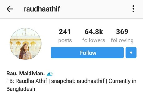 The case of the missing Instagram users from Raudha's